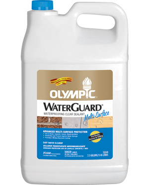 Olympic® WaterGuard® Multi-Surface Waterproofing Sealant